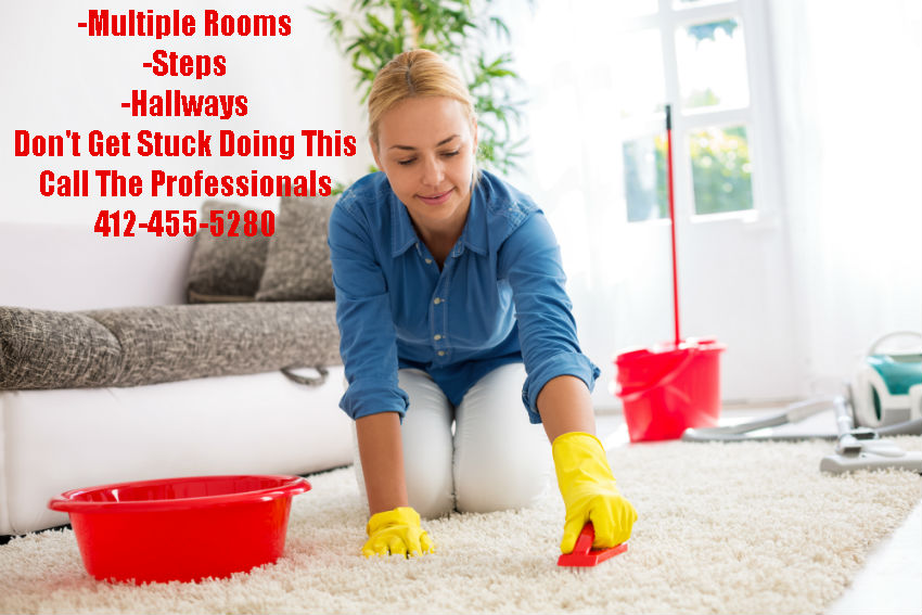 The Pittsburgh Carpet Cleaning Service Professionals